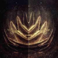 zoom_lotus